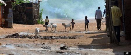 Somalians